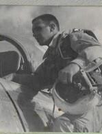 Walter Petrie